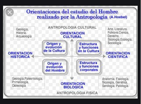 Cuadro comparativo de los tipos de antropología