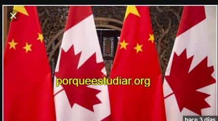 Estudiar Veterinaria en Canadá