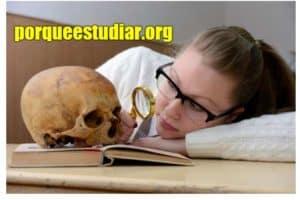 Por qué estudiar Antropología