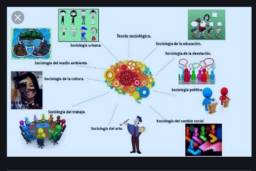Ramas de la Sociología