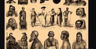 ¿cuáles son las ramas de la antropología?