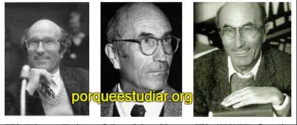 historia del sociologo Nikñas Luhmann