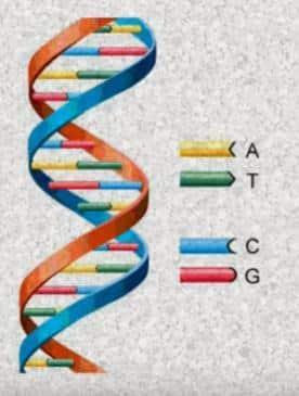 Qué es la bioquímica