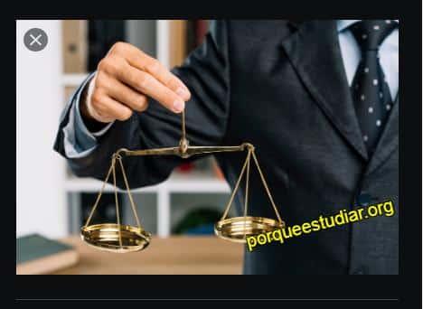 Cuáles son las ramas del derecho