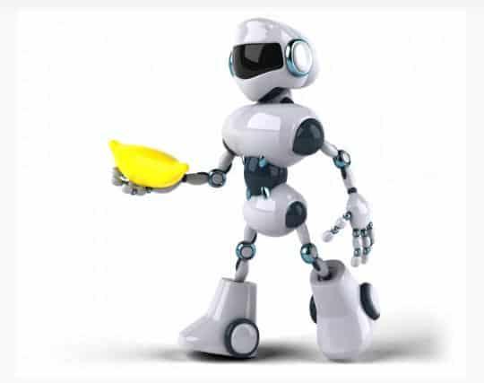 Ramas de la Robótica