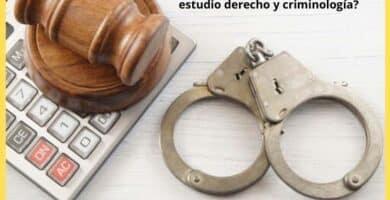 Me puedo Convertir si estudio derecho y criminología
