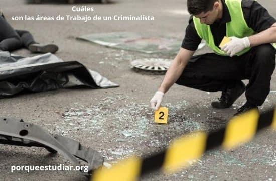 Cuáles son las áreas de Trabajo de un Criminalísta