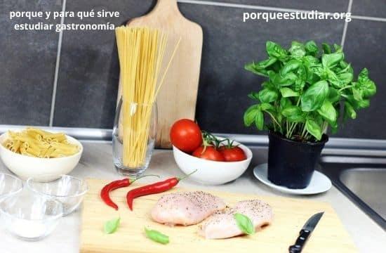 para qué Sirve el por qué estudiar gastronomía